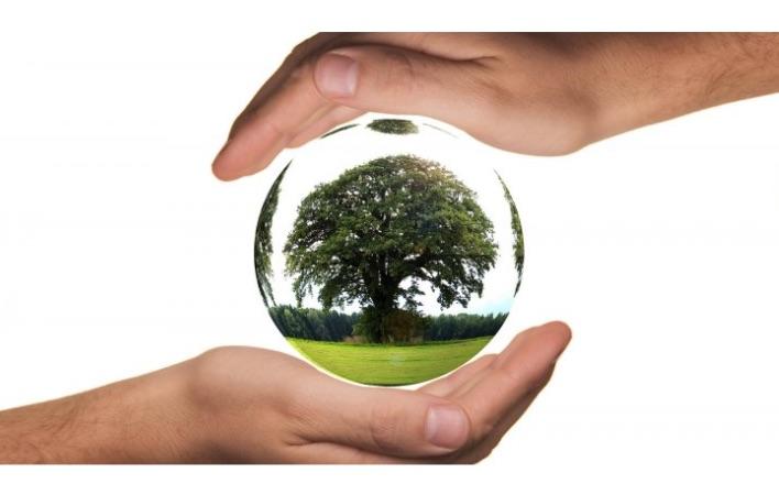 Петиції Полтава Екологія